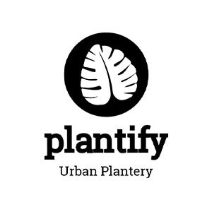 My Plant Decor